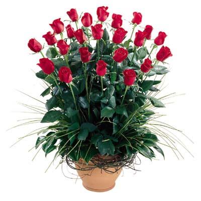 Ardahan uluslararası çiçek gönderme  10 adet kirmizi gül cam yada mika vazo