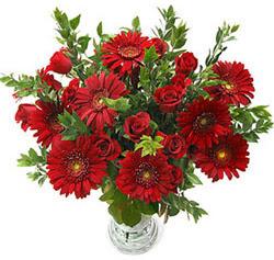5 adet kirmizi gül 5 adet gerbera aranjmani  Ardahan hediye çiçek yolla