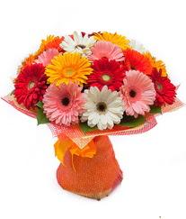 Renkli gerbera buketi  Ardahan anneler günü çiçek yolla