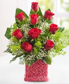 Cam içerisinde 9 adet kırmızı gül  Ardahan internetten çiçek satışı