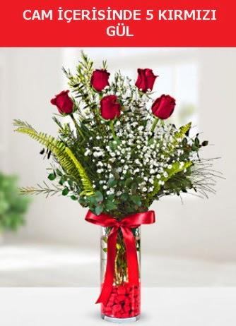 Cam içerisinde 5 adet kırmızı gül  Ardahan çiçek siparişi sitesi