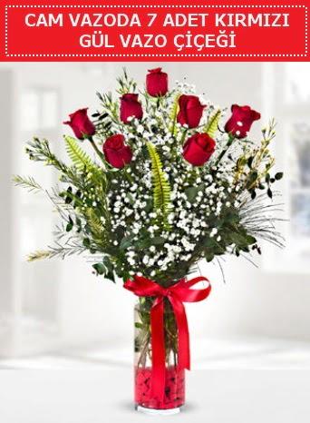 Cam vazoda 7 adet kırmızı gül çiçeği  Ardahan çiçek gönderme sitemiz güvenlidir