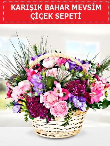 Karışık mevsim bahar çiçekleri  Ardahan ucuz çiçek gönder