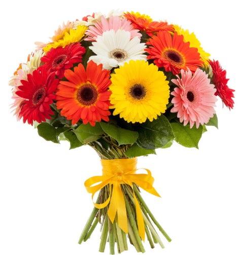 Gerbera demeti buketi  Ardahan çiçek satışı