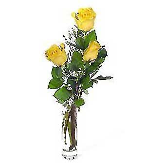 Ardahan internetten çiçek siparişi  3 adet kalite cam yada mika vazo gül