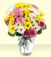 Ardahan internetten çiçek siparişi  mevsim çiçekleri mika yada cam vazo