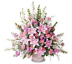 Ardahan çiçek siparişi sitesi  Tanzim mevsim çiçeklerinden çiçek modeli
