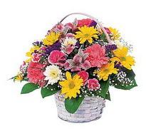 Ardahan çiçek , çiçekçi , çiçekçilik  mevsim çiçekleri sepeti özel