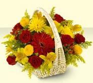 Ardahan 14 şubat sevgililer günü çiçek  sepette mevsim çiçekleri