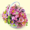 Ardahan yurtiçi ve yurtdışı çiçek siparişi  bir sepet dolusu kir çiçegi  Ardahan çiçek gönderme sitemiz güvenlidir