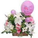 balon ve çiçeklerle tanzim  Ardahan internetten çiçek satışı