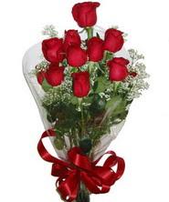 9 adet kaliteli kirmizi gül   Ardahan online çiçekçi , çiçek siparişi