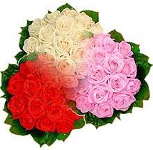 3 renkte gül seven sever   Ardahan çiçek , çiçekçi , çiçekçilik