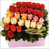 15 adet renkli gül ve cam   Ardahan çiçekçi mağazası