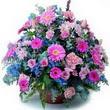 karisik mevsim kir çiçekleri  Ardahan çiçek gönderme sitemiz güvenlidir