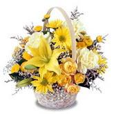 sadece sari çiçek sepeti   Ardahan çiçek gönderme sitemiz güvenlidir