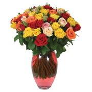 51 adet gül ve kaliteli vazo   Ardahan çiçek gönderme sitemiz güvenlidir
