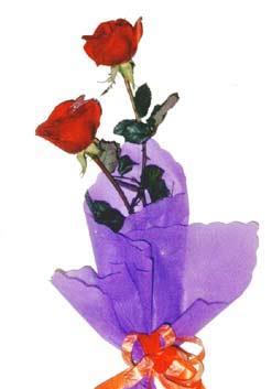 2  adet kirmizi gül buketi   Ardahan çiçek , çiçekçi , çiçekçilik