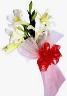 Ardahan çiçek , çiçekçi , çiçekçilik  ince vazoda gerbera ve ayi