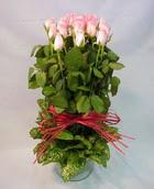 13 adet pembe gül silindirde   Ardahan çiçek yolla