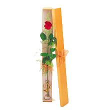ince  kutuda  1  gül   Ardahan çiçek yolla