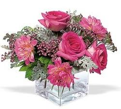 Ardahan cicekciler , cicek siparisi  cam içerisinde 5 gül 7 gerbera çiçegi