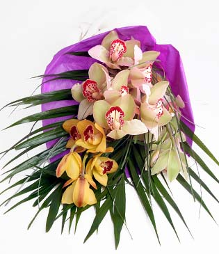 Ardahan cicekciler , cicek siparisi  1 adet dal orkide buket halinde sunulmakta