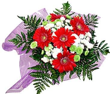 gerbera ve krizantem demeti  Ardahan çiçekçi mağazası