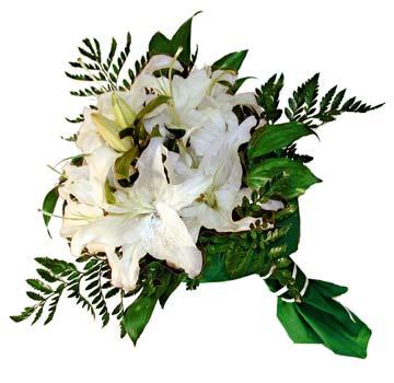 3 adet kazablanka demeti buketi  Ardahan çiçekçi mağazası