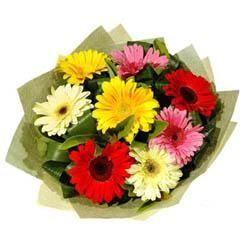 9 adet karisik gerbera demeti  Ardahan çiçek mağazası , çiçekçi adresleri
