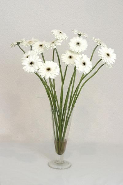 Ardahan çiçek mağazası , çiçekçi adresleri  cam vazo içerisinde 17 adet sade gerbera