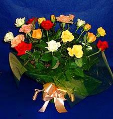 Ardahan hediye çiçek yolla  13 adet karisik renkli güller