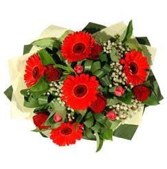 Ardahan ucuz çiçek gönder   5 adet kirmizi gül 5 adet gerbera demeti