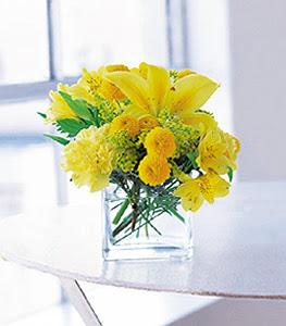 Ardahan ucuz çiçek gönder  sarinin sihri cam içinde görsel sade çiçekler