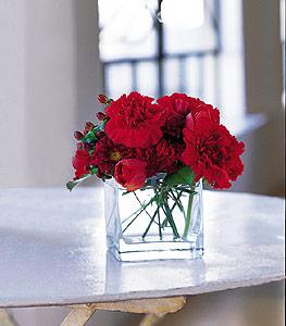 Ardahan ucuz çiçek gönder  kirmizinin sihri cam içinde görsel sade çiçekler