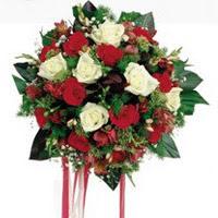 Ardahan ucuz çiçek gönder  6 adet kirmizi 6 adet beyaz ve kir çiçekleri buket