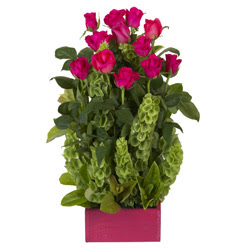 12 adet kirmizi gül aranjmani  Ardahan çiçek mağazası , çiçekçi adresleri