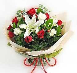 güller ve kazablanklardan görsel bir buket  Ardahan internetten çiçek satışı