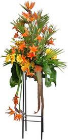 Ardahan çiçek siparişi sitesi  perförje tanzimi dügün nikah ve açilislara