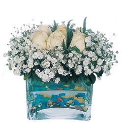 Ardahan çiçekçi mağazası  mika yada cam içerisinde 7 adet beyaz gül