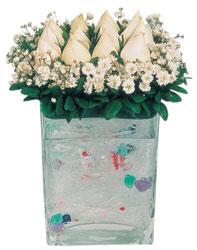 Ardahan çiçekçi mağazası  7 adet beyaz gül cam yada mika vazo tanzim