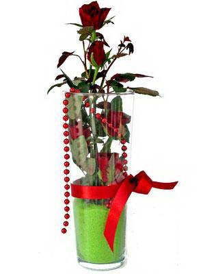 Ardahan online çiçek gönderme sipariş  Cam yada mika içerisinde 9 adet kirmizi gül - sevdiklerinize özel