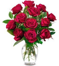 Ardahan online çiçek gönderme sipariş  1 düzine kirmizi gül sevenlere özel vazo gülleri