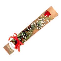 Ardahan çiçek , çiçekçi , çiçekçilik  Kutuda tek 1 adet kirmizi gül çiçegi