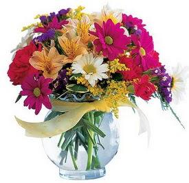Ardahan internetten çiçek satışı  cam yada mika içerisinde karisik mevsim çiçekleri