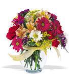 Ardahan çiçek , çiçekçi , çiçekçilik  cam yada mika vazo içerisinde karisik kir çiçekleri