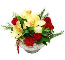 Ardahan çiçek gönderme  1 adet orkide 5 adet gül cam yada mikada
