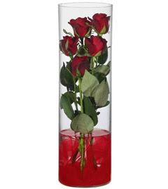 cam içerisinde 7 adet kirmizi gül  Ardahan çiçekçiler