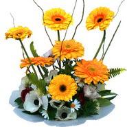 camda gerbera ve mis kokulu kir çiçekleri  Ardahan çiçekçi telefonları