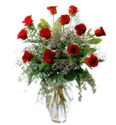 Vazo içerisinde 11 kirmizi gül  Ardahan çiçek siparişi vermek